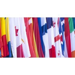 Bandera de Países